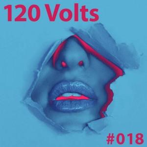 120 Volts #018