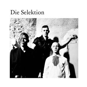 Die Selektion - Die Selektion
