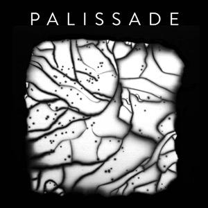 Palissade - Palissade